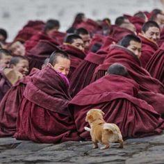 Mystical vibes Tibet. Photo by @choebay