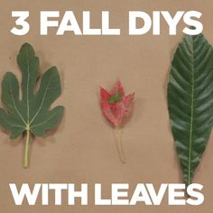 3 Fall Leaf Crafts