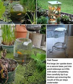 Koi Fish Pond Observation Tower - 22 Small Garden or Backyard Aquarium Ideas Will Blow Your Mind(Diy Garden Pond) Outdoor Fish Ponds, Backyard Ponds, Koi Ponds, Indoor Pond, Outdoor Fish Tank, Indoor Water Garden, Backyard Waterfalls, Outdoor Fountains, Pond Landscaping