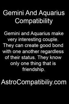 gemini and aquarius relationship stories