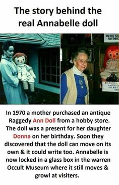 The True And Terrifying Story Behind The Annabelle Doll Wow Facts, Real Facts, Wtf Fun Facts, Funny Facts, Amazing Science Facts, Amazing Facts, Funny Quotes, True Interesting Facts, Interesting Facts About World