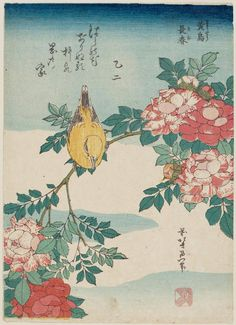 Title:黄鳥 長春(こうちょう ばら) Warbler and Roses (Kôchô, bara), from an untitled series known as Small Flowers Artist:葛飾北斎 Katsushika Hokusai