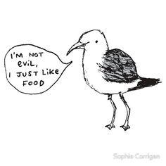 Seagulls Aren't Evil by Sophie Corrigan