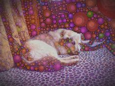 Coco by Michelle LaRiviere #phoneography #ipadart #percolatorapp #digitalart #photobasedart #dogart #dogs