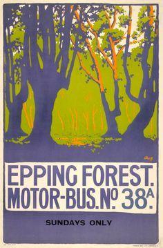 Epping Forest ~ Essex _______________________________ LNER
