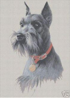Schnauzer Crochet Pattern