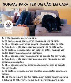 hehe <3 :) #petmeupet #cachorro #filhode4patas Love Pet, I Love Dogs, Cute Dogs, Animals And Pets, Cute Animals, Dog Soldiers, Pet Vet, Dog Photos, Pet Shop