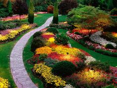 Colorful flower beds with lighting! Lovely!