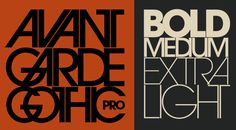 Lubalin was two years old when the first AIGA medal was given. Lubalin was the 62nd medalist for AIGA.