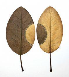 Сухие листья и другие природные объекты, украшенные тонкими вязаными элементами – это страсть и уникальная особенность творчества мастерицы из Англии Сюзанны Бауэр (Susanna Bauer)