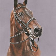 Loved painting this beautiful performer.... #classicaldressage #dressage #horsesofinstagram #horseportrait #petportraitsofinstagram #equineart #horsesofinstagram #uniquegifts #christmasgifts #gifts