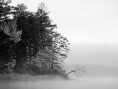 Foggy Lake Black And White Nature Picture Photo HD Wallpaper ...