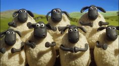 New party member! Tags: yes olympics yay clapping clap rio congratulations woo congrats well done slow clap aardman shaun the sheep championsheeps