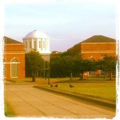 University of Maryland Eastern Shore *1 Backbone Road *Princess Anne , MD 21853 *www.umes.edu/education/default.aspx?id=17432 *jmkeanedawes@umes.edu