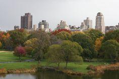 """Central Park"" New york"