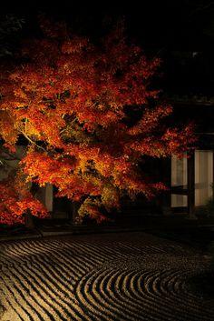 Tenjuan, Kyoto, Japan. Tenjuan, a sub-temple of Nanzen-ji in the Higashiyama area of Kyoto, Japan. Constructed in 1337, Tenjuan is known for its splendid garden.