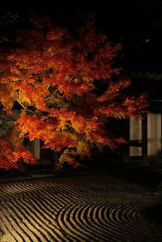 Tenjuan, Kyoto, Japan. Tenjuan, a sub-temple of Nanzen-ji in the Higashiyama area of Kyoto, Japan. Constructed in 1337, Tenjuan is known for its splendid garden.