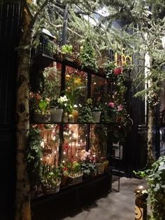 Rue de Jacobs Paris florist.