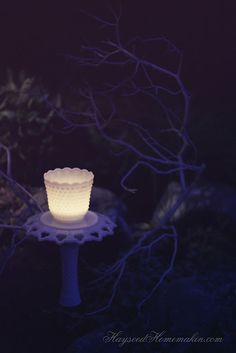 DIY Garden Lights {by Hayseed Homemakin'}