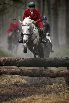 refined-equestrian:   On the hunt. - WASPing Through the Countryside