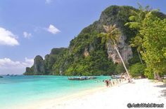 Classic beaches, stunning rock formations, and vivid turquoise waters of the Phi Phi Islands