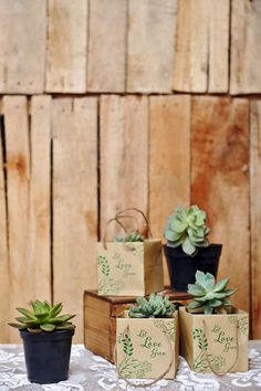 This eco-friendly wedding favor LET LOVE GROW Succulent Pot is a symbolic way to say that your love grows more and more each day. Propagating Succulents, Succulents Diy, Planting Succulents, Cactus Farm, Flower Truck, Succulent Favors, Flower Packaging, Plants Are Friends, Cactus Y Suculentas