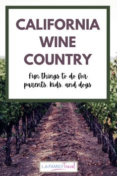There are so many fun things to do with kids in sonoma and napa counties. California wine country has lots of activities that families can enjoy on a family trip to california wine country. Many wineries are welcoming to kids and dogs and provide fun things to do. Usa Travel Map, Usa Travel Guide, Canada Travel, Travel Tips, California Destinations, California Travel, California Wine, Travel Destinations, Travel With Kids