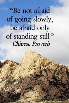 """Be not afraid of going slowly, be afraid only of standing still."" ~ Chinese Proverb"