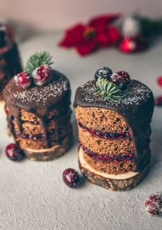 Tortini natalizi al cioccolato, senza glutine e latticini – D&A - Videoricette Juice Plus, Christmas Desserts, Vegan Desserts, Fitness Diet, Sweet Recipes, Gluten Free, Xmas, Sweets, Ethnic Recipes