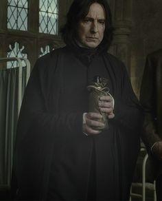 Alan as Severus Snape Snape Harry Potter, Professor Severus Snape, Harry Potter Severus Snape, Severus Rogue, Alan Rickman Severus Snape, Harry Potter Characters, Harry Potter World, Mein Crush, Alan Rickman Always