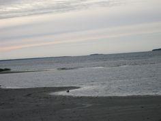 Blogi  OMAISAPU.fi      : Saariston rengastie