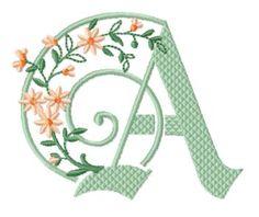 ©Skeldale House, ABC Blackswan Embroidery Letters, Embroidery Fonts, Floral Embroidery, Machine Embroidery, Embroidery Designs, Flower Alphabet, Abc Alphabet, Beautiful Fonts, Monogram Fonts