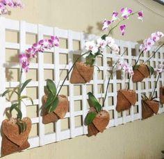 Original idea para tener plantas en el interior