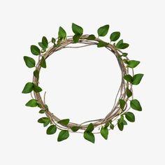 Plant Wallpaper, Flower Wallpaper, Leaf Border, Floral Border, Tropical Frames, Logo Design Love, Background Powerpoint, Instagram Frame, Plant Illustration