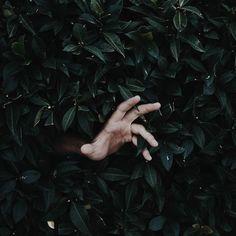 [Photo by chryphoto on Instagram] Qualcosa qua mi tormenta Sono da una vita che non faccio una scelta Mentre ci prendiamo a pugni con la coscienza Temo fortemente che la mente mi menta Scappo scrivo al volo scusa per la fretta Lascio pezzi di me a pezzi di merda.
