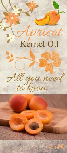 Apricot Kernel Oil: At first, it was used as a natural remedy to cure various ailments and discomforts in the body. Since then, it has been used to create all kinds of products, ranging from soaps to regular cooking oils. Apricot Oil Benefits, Apricot Tree, Apricot Kernels, Essential Oil Uses, Bath Products, Carrier Oils, Lotions, Beauty Care, Soaps