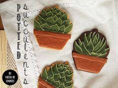 Potted Succulent Plant Cookies by Coeur de Cookies