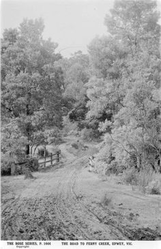 Upwey.  The road  to Ferny  Creek.   vic.