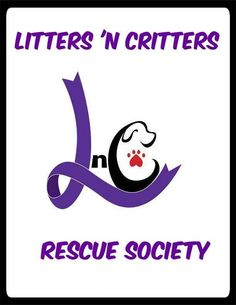 Litters 'n Critters   Halifax, NS