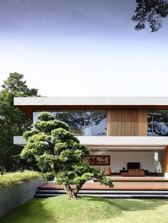 This amazing single family residence situated in Singapore was designed in 2013 by ONG&ONG Pte Ltd. #Architects > love the tree too!