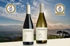 News | Uva Mira Mountain Vineyards