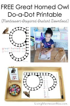 FREE Montessori-inspired great horned owl do-a-dot printable for an owl theme or letter g phonics activities for toddlers and preschoolers - Living Montessori Now Fall Preschool Activities, Fine Motor Activities For Kids, Phonics Activities, Free Preschool, Toddler Activities, Preschool Kindergarten, Writing Activities, Do A Dot, Great Horned Owl