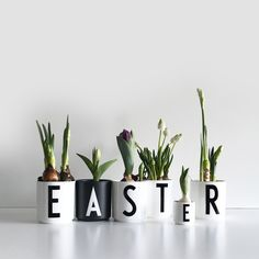Happy Easter :) Now available in our store. - Happy Easter :] Now available in our store. Easter Crafts, Christmas Crafts, Easter Ideas, Diy Osterschmuck, Diy And Crafts, Crafts For Kids, Planting For Kids, Diy Ostern, Easter Printables