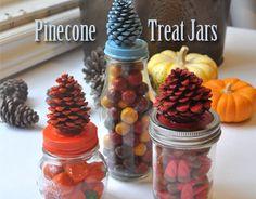 Pinecone treat jars.ocfamily