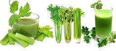 Herbal remedies that really help