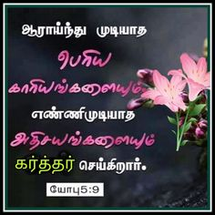 Bible Words Images, Tamil Bible Words, Biblical Verses, Bible Verses, Blessing Words, Happy New Year Message, Bible Promises, Bible Verse Wallpaper, Bible Quotes