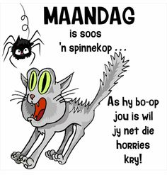 Afrikaanse Quotes, Goeie Nag, Goeie More, Morning Humor, Good Morning, Funny Quotes, Words, Mornings, Van