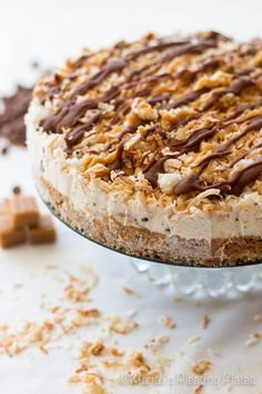 Samoa Ice Cream Cake @FoodBlogs