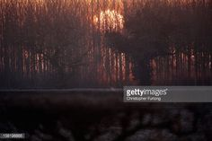 News Photo : The sun rises and begins to burn off early...