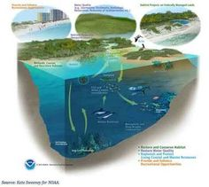 Final version of plan will spend another $1.2 billion to restore resources in the Gulf of Mexico
